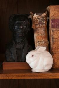 NR fig 1 bunny